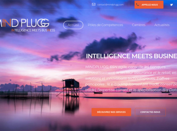 Diving in Web Refonte site internet MindPlugg cabinet de Conseil en innovations technologiques